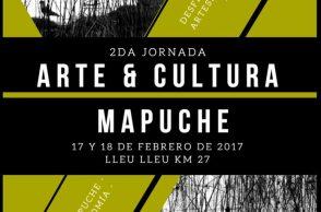 arte y cultura mapuche
